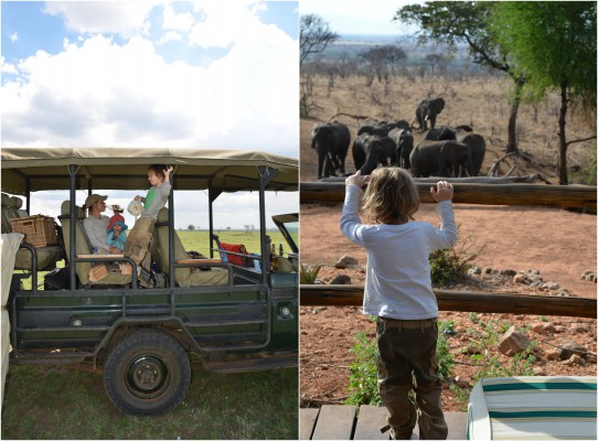 Ratgeber Safari mit Kindern 1