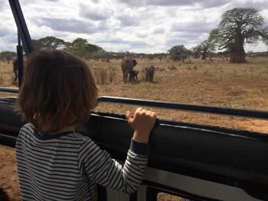 Ratgeber Safari mit Kindern Tansania mit Kindern 3