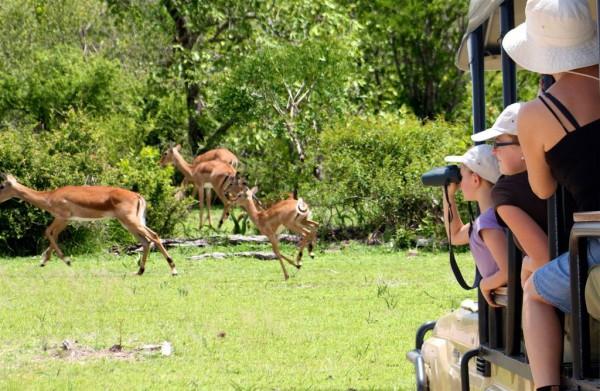 Ratgeber Safari mit Kindern Tansania mit Kindern Amara Camp Safari mit Kindern