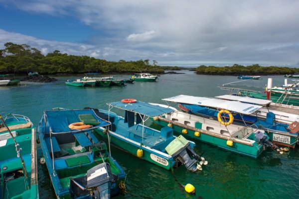 Nature - Galapagos