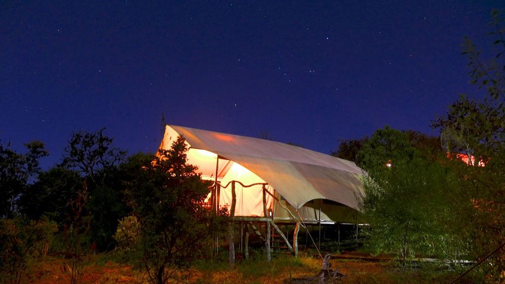 Safari Camp 2