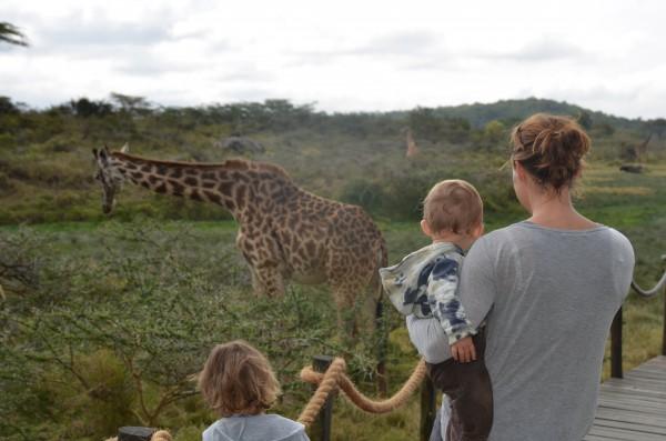 Ratgeber Fernreisen mit Kleinkindern 2
