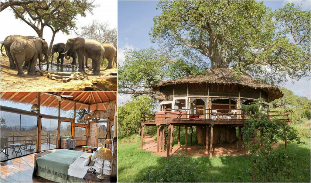 10 einzigartige Hotels - Tarangire Treetop Lodge
