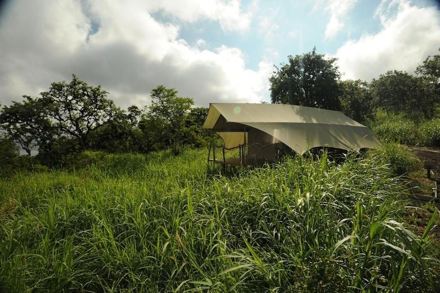 Lieblingshotel- Galapagos Safari Camp 12