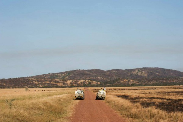 Reisetipp Glamping in Tansania Greystoke Mahale Camp Serengeti Camp | Julia Malchow