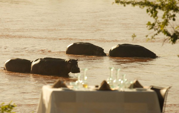 Reisetipp Glamping in Tansania The Retreat Selous Game Reserve  | Julia Malchow