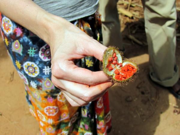 Die Top 10 Erlebnisse für Abenteurer auf Sansibar - Gewürztour