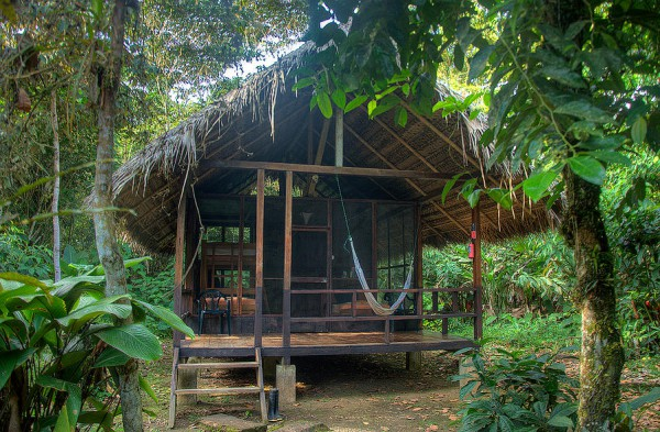 Huaorani Ecolodge 13