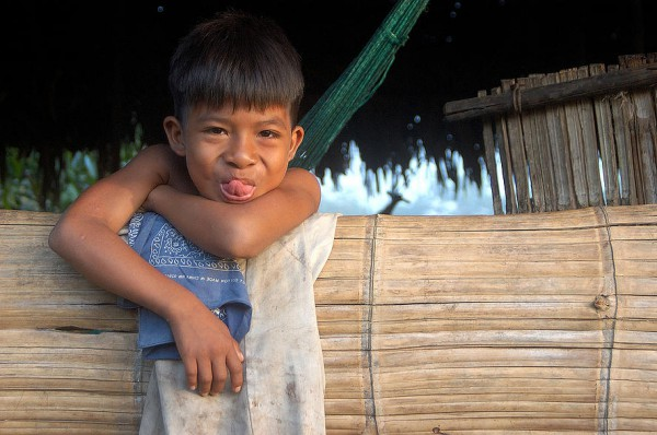 Huaorani Ecolodge 14