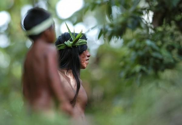 Huaorani Ecolodge 7