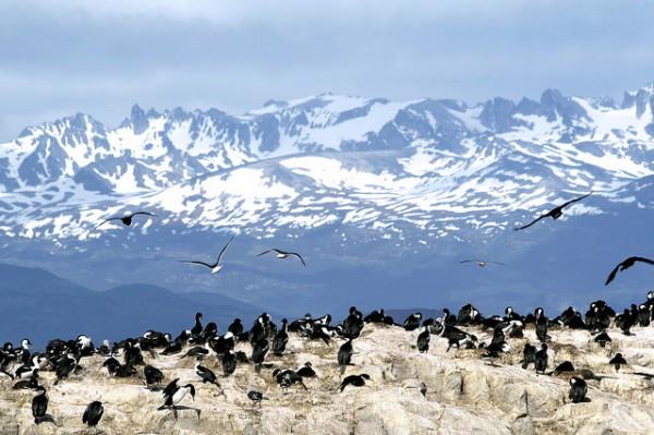 Aktivreisen 2016 - Feuerland, Patagonien - Mavia Soul Travel